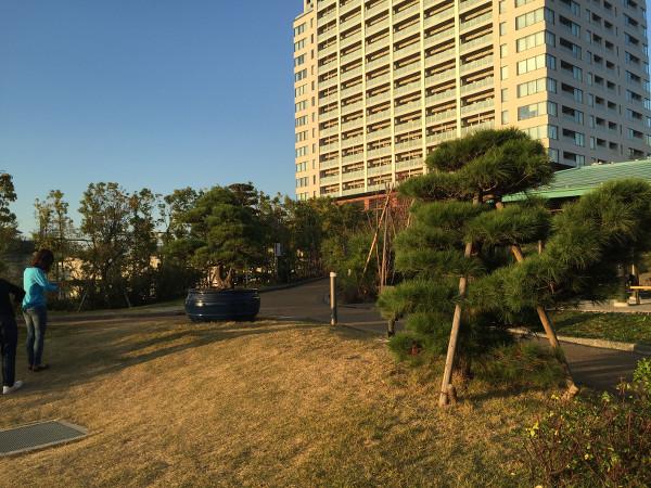 緑豊 天空庭園