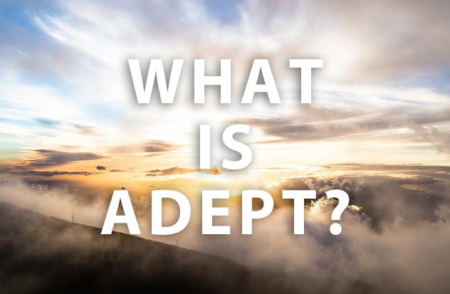 アデプトプログラムとは何なのか?